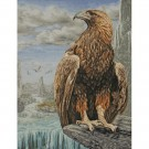 borduurpakket adelaar bij rotsgebergte