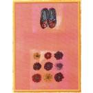 borduurpakket ballerinaschoentjes met zinnia's