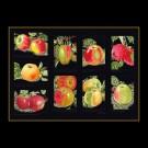 borduurpakket appels op zwart